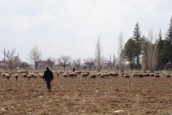 Sieben praktische Tipps für eine Radreise durch die Türkei